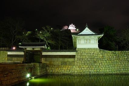 ライトアップされた丸亀城