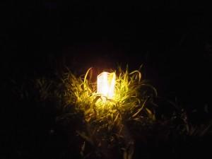 火が灯されたキャンドル
