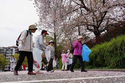 桜がキレイですね♪