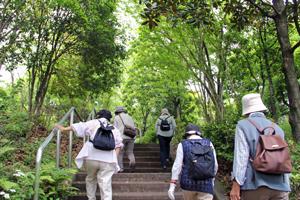 鶴亀松公園入口の階段