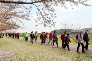 桜を眺めながら、おしゃべりにも花が咲く?