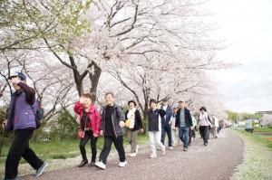 桜満開✿笑顔も満開✿